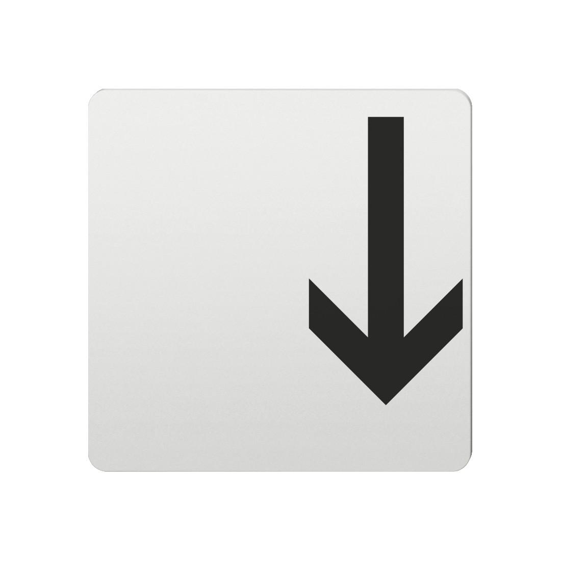 FSB Hinweiszeichen Pfeil nach unten Lasergraviert Aluminium naturfarbig (0 36 4059 00001 0105)