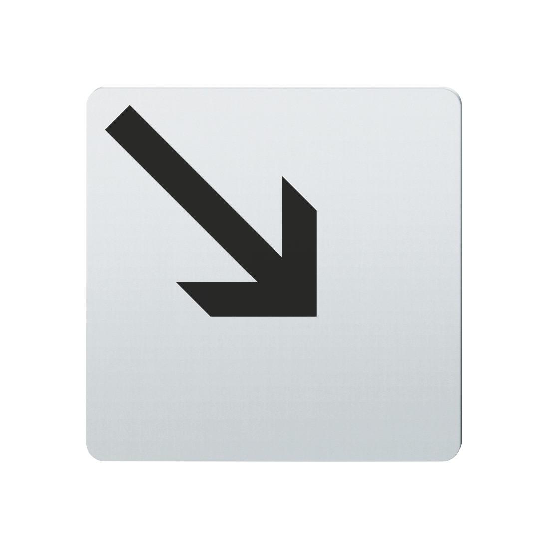 FSB Hinweiszeichen Pfeil nach rechts unten Lasergraviert Edelstahl fein matt (0 36 4059 00006 6204)