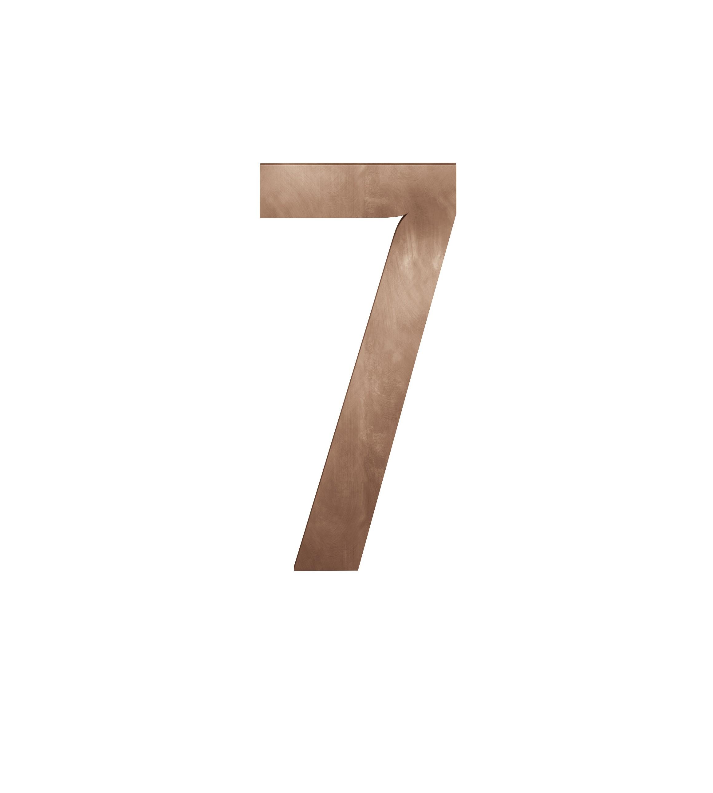 FSB Hausnummer Ziffer 7 Bronze (0 38 4005 00007 7615)