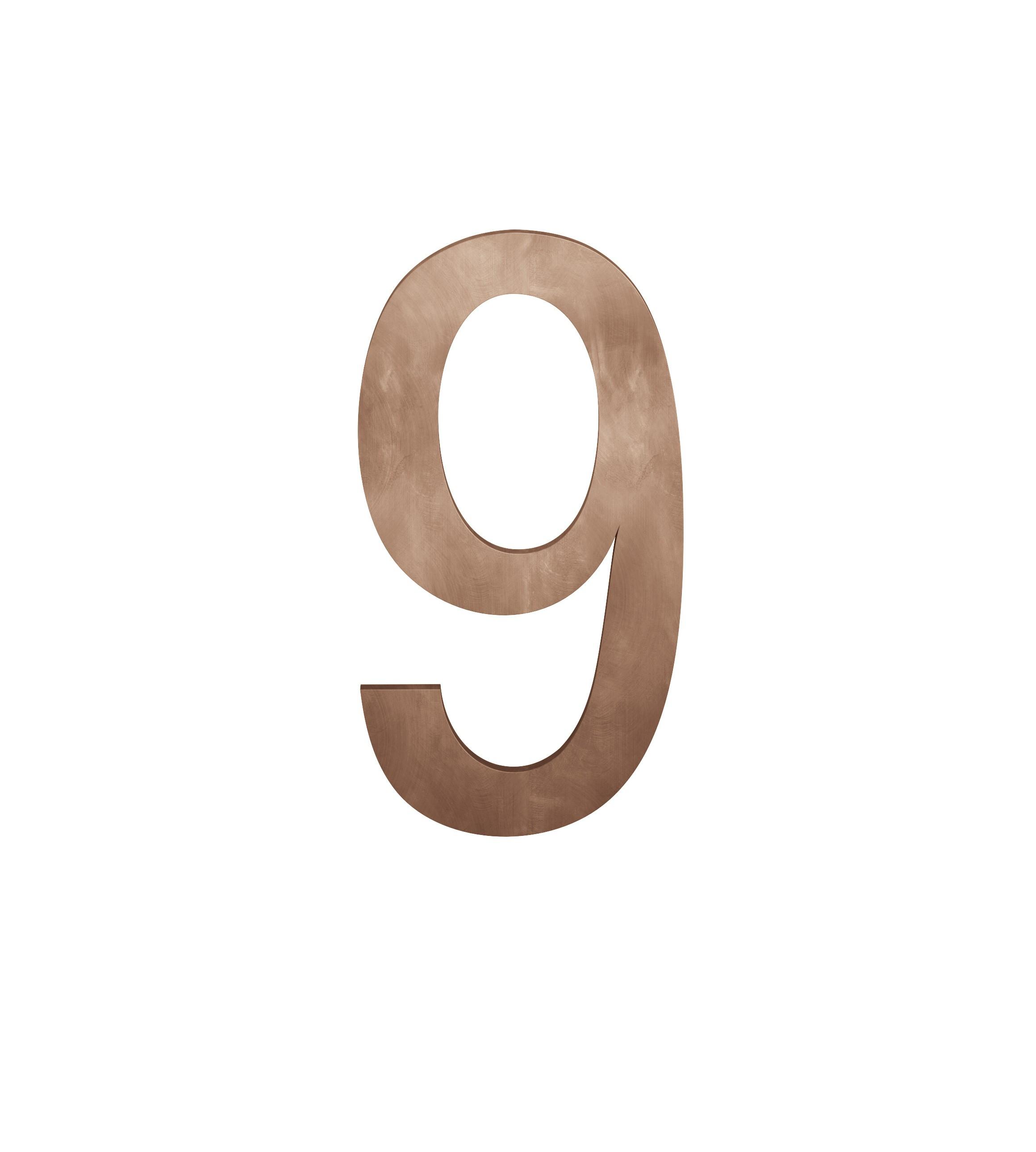 FSB Hausnummer Ziffer 9 Bronze (0 38 4005 00009 7615)