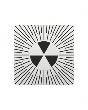 FSB Hinweiszeichen radioaktive Stoffe Lasergraviert Aluminium naturfarbig (0 36 4059 00419 0105)