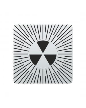 FSB Hinweiszeichen radioaktive Stoffe Lasergraviert Edelstahl fein matt (0 36 4059 00419 6204)